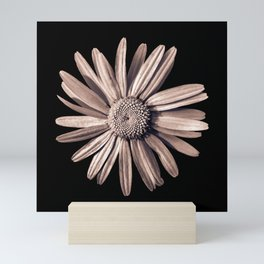 Dinged - bronze Mini Art Print