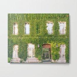 Ivy in le Marais Metal Print