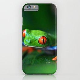 Little Tree Frog (Color) iPhone Case