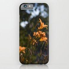 Summer Afternoon iPhone 6s Slim Case