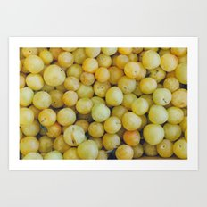 A Pile of Yellow Plums Art Print