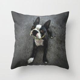 BOSCO (rescue pup) Throw Pillow