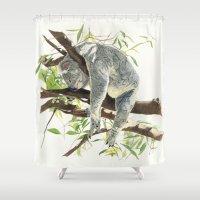 koala Shower Curtains featuring Koala by Patrizia Donaera ILLUSTRATIONS