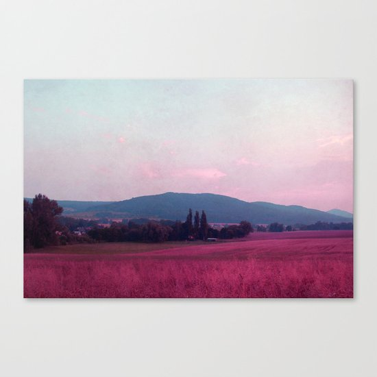 small mountains Canvas Print