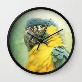 Bright parrot! Wall Clock