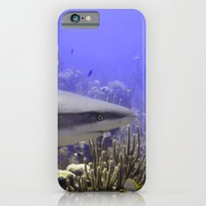 Shark Swimming Past iPhone 6s Slim Case