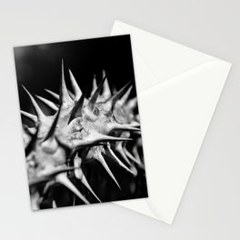 # 156 Stationery Cards