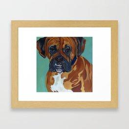 Boxer Dog Pet Portrait Framed Art Print