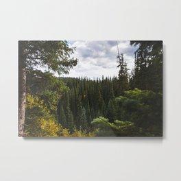 Ouray, Colorado Metal Print