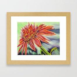 Fire Flower  Framed Art Print