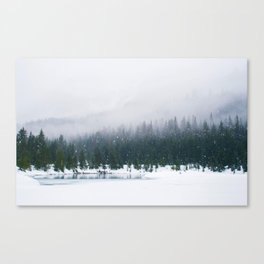 Evergreen Winter Forest (Color) Canvas Print