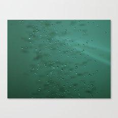 1/2000 Canvas Print