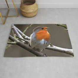 European Robin Red and Grey Painting Rug