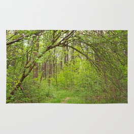 Forest Arch Trail Rug