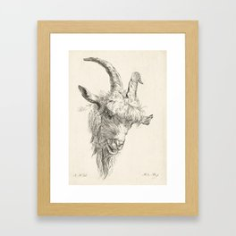 Vintage Goat Head Illustration Framed Art Print