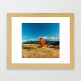 Simple Fall Tree Framed Art Print