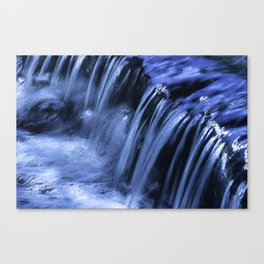 Jackson Creek Bubbles Over Rocks And Roots Canvas Print
