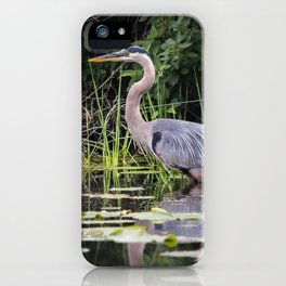 Heron pose in the channel iPhone Case