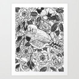 Zebra finch and rose bush ink drawing Art Print
