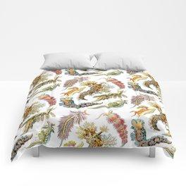 Ernst Haeckel - Nudibranchia (Snails) Comforters