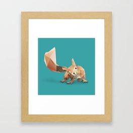 Squirrel. Framed Art Print