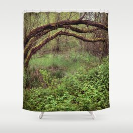 Arch of Jericho Shower Curtain
