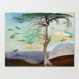 Lonely Cedar Tree Landscape Painting Canvas Print