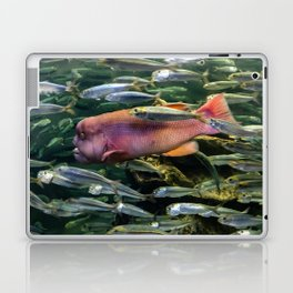 Monster in the Midst Laptop & iPad Skin