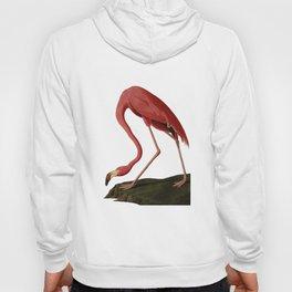 Flamingo Large Print Hoody
