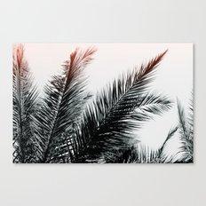 Flare #5 Canvas Print