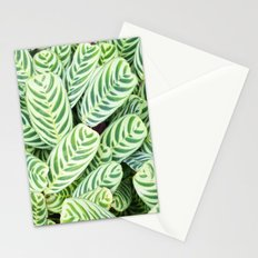 Botanical green white natural tropical leaves Stationery Cards
