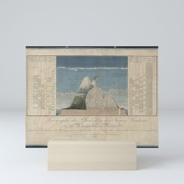 Alexander von Humboldt - Section View of Plants on the Chimborazo and Cotopaxi Volcanoes (1807) Mini Art Print