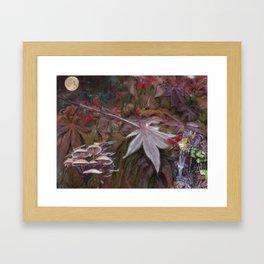 Leave of Fall Framed Art Print