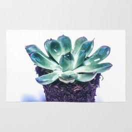 Cactus profile Rug