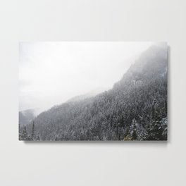 View from Mt. Townsend Metal Print