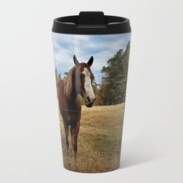 Two Horse Amigos in Pasture Travel Mug