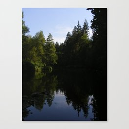Nature reflecting itself Canvas Print