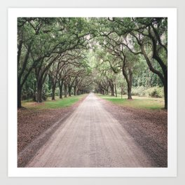 the heart melts on long driveways because rarely are our own paths in life as straight or as scenic Art Print