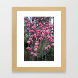 Beauty In Pink And Gray Framed Art Print