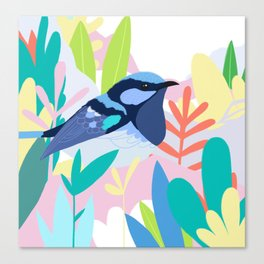 Superb Fairy-Wren Bird in the Garden Canvas Print