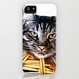 Don't laught at me! iPhone Case