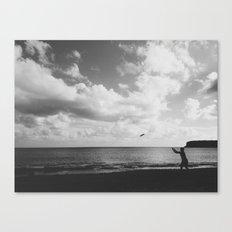 Frisbee Canvas Print