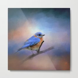 The Happiest Blue - Bluebird Metal Print