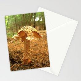 Mushroom S Stationery Cards