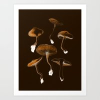 mushrooms Art Prints featuring Mushrooms by Andreas Lie
