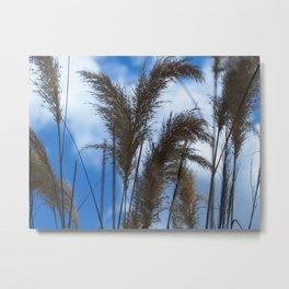 Tall Grasses Metal Print