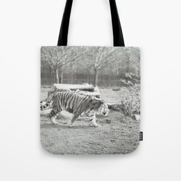 On the prowl... Tote Bag