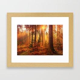 The Golden Hour (Color) Framed Art Print