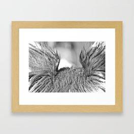 Ears Framed Art Print