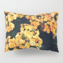 Yellow Flowers Pillow Sham